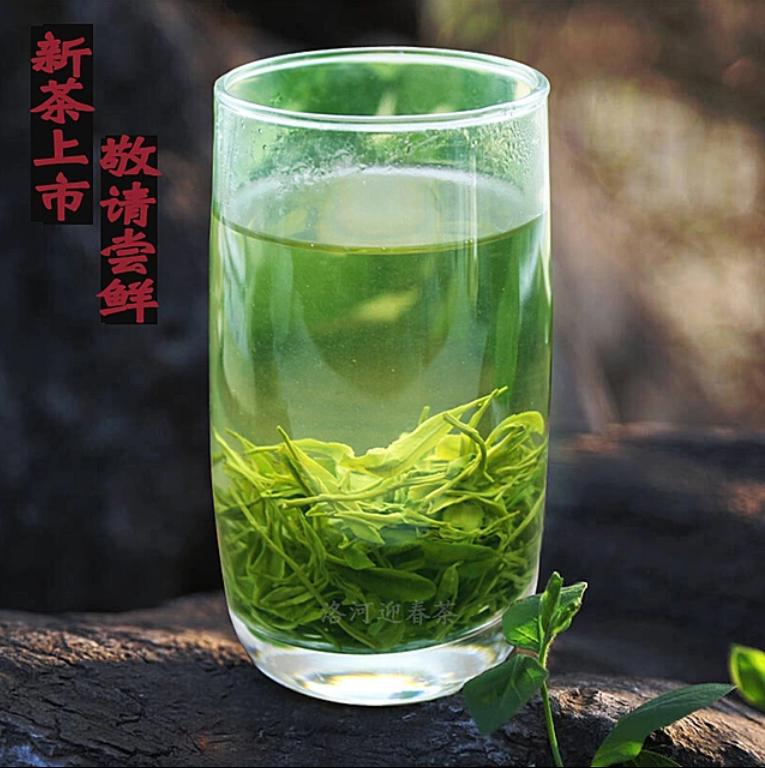 2019年春茶新茶谷雨毛尖 湖北十堰竹溪竹山特产茶 高山绿茶叶500G