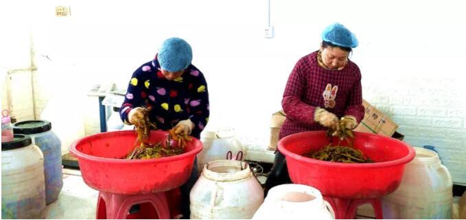 竹溪县知心蔬菜 泡菜
